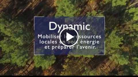 Dynamic Nouvelle-Aquitaine : mobiliser localement le bois énergie